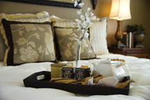 bed bug free hotels in new orleans